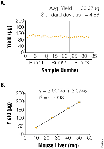 Consistent yield and quality of isolated total RNA.