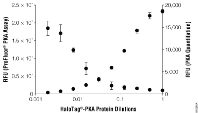 PKA enzyme assay on HaloLink Slides