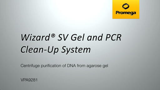 Wizard SV Gel and PCR Clean Up System Gel Spin